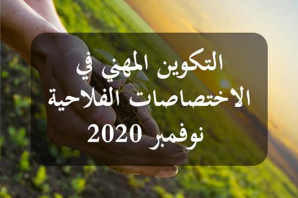 http://orientini.com/uploads/Orientini.com_AVFA_Tunisie_2020.jpg