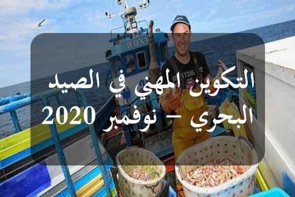 http://orientini.com/uploads/Orientini.com_AVFA_nouvembre_2020.jpg