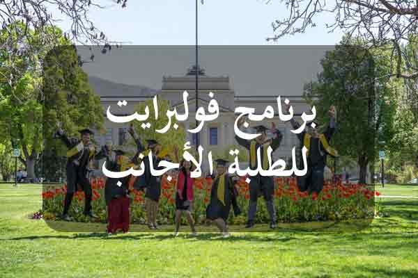 http://orientini.com/uploads/Orientini.com_Fulbright_foreign_student_prog_2020.jpg
