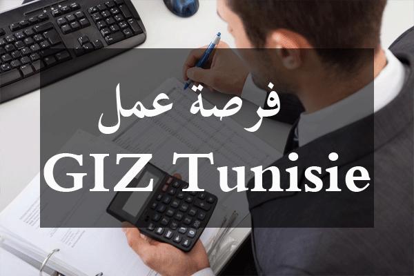 http://orientini.com/uploads/Orientini.com_giz_tunisie_expert_2019.png