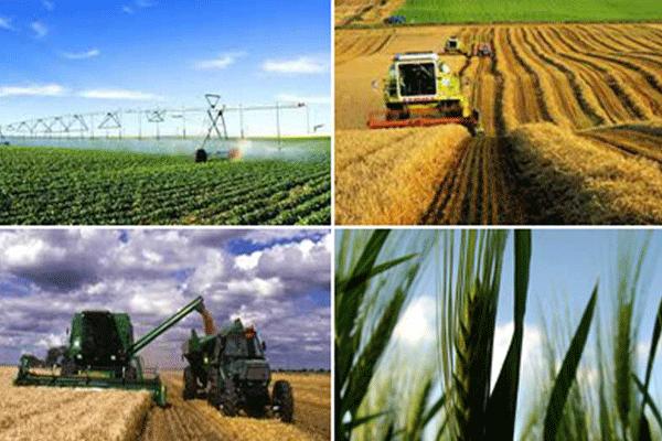 http://orientini.com/uploads/Orientini.com_permission_agriculture_2018.png
