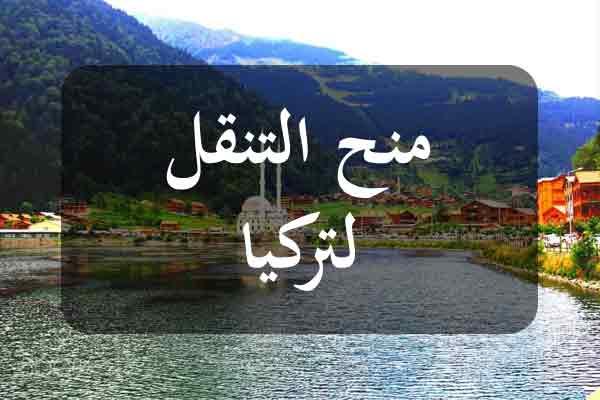 http://orientini.com/uploads/Orientini.com_turquie_sfax_br_mobilite_2020.jpg