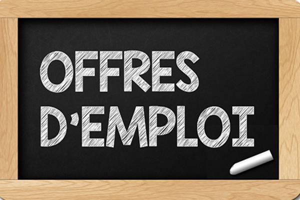 http://orientini.com/uploads/offres_emploi_tav.png
