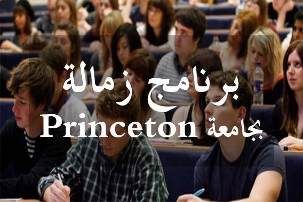 http://orientini.com/uploads/princeton_fellowship.jpg