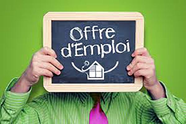 http://orientini.com/uploads/usa_emploi.png