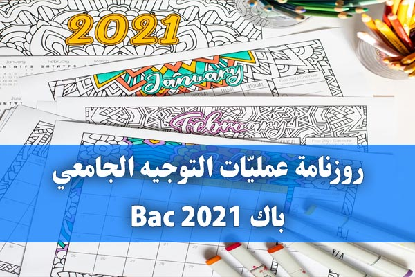 https://orientini.com/uploads/calendrier_orientation_universitaire_2021.jpg